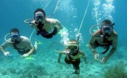 belize-snuba-adventure-tour-from-ambergris-caye-in-san-pedro-121636