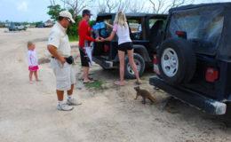 Passion_Island_Jeep_Tour2