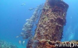 Wreck Dive El Frio Ultrafreeze Cancun 2
