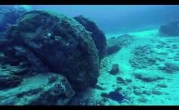 Wreck Dive c55 Barrera Cancun2
