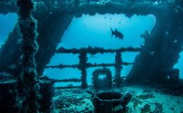 Wreck Dive c58 Anaya Cancun