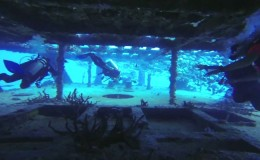 Wreck Dive c58 Anaya Cancun 3
