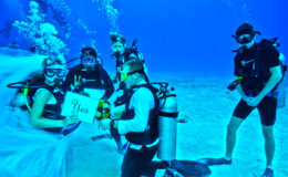 cozumel_mexico_wedding_island_married_cozumel