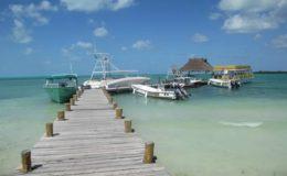 isla-contoy06