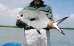 nwm-kp518x518-233229226img-2181-Charter-de-pesca-en-Isla-Blanca,-Cancun