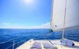pdc-catamaran-externo-02