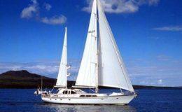 yachts15