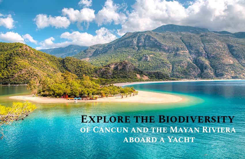 Yacht Rental Riviera Maya